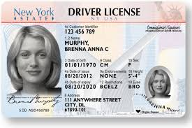 Of 1993 Drivers 28 com Bfegy Template License Ny Images Fake