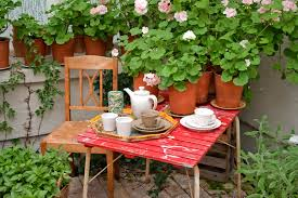 terrace gardening in india how to