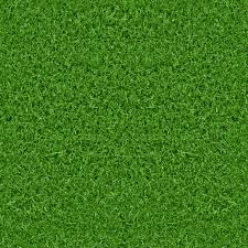 Green Grass Texture Free Textures All Design Creative - HD Wallpapers
