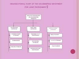 Organizational Chart Of Housekeeping Department For Large Establishments Housekeeping Department