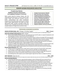 Classy Resume Executive Director Sample In Board Of Directors