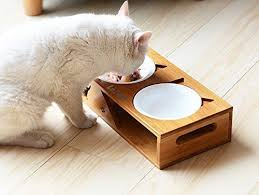 elevated cat bowls. Perfect Elevated Lepet Raised CAT Feeder With 4 Bowls Pet Elevated 2 Ceramic And Stainless  Steel  EBay Throughout Cat L