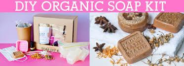 diy organic soap kit recipes