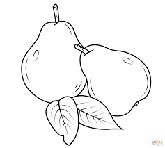 Small Picture Two Pears coloring page Free Printable Coloring Pages