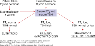 Thyroid Hormone Flow Chart Chapter 7 The Thyroid Gland Greenspans Basic Clinical