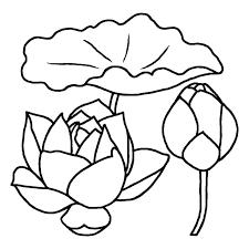 ハス蓮白黒夏の花無料イラスト素材