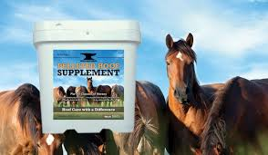 The 15 Best Hoof Supplement For Horses 2019 Reviews