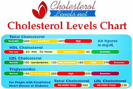 Cholesterol Levels Chart 2015 Three Years Ago I Was Told That I Had Really High