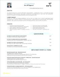 Beautiful Resume For No Work Experience Sample And 68 Resume Summary