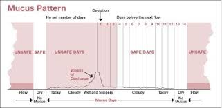 Ovulation Chart Baby Gender Selection Baby Girl Boy To