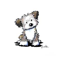 Small Picture Havanese Puppy by Kim Niles Havanese Puppy Drawing Havanese