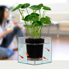 office flower pots. keybox creative clear tube plant pot flower decorative selfwatering planter fish tank for home office desk pots s