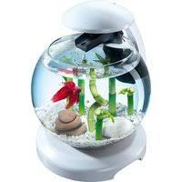 Товары для рыб и рептилий — купить на Яндекс.Маркете