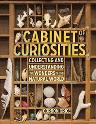Cabinet Of Wonders Cabinet Of Curiosities Collecting And Understanding The Wonders