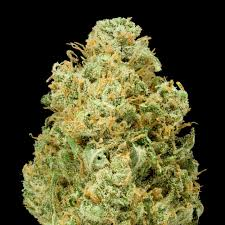 Light Of Jah Light Of Jah Marijuana Order Weed Online From Cannabis