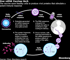 MRNA Covid Vaccine Access Carves Up World Into Haves and Have-Nots -  Bloomberg