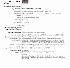 Awesome American Resume Format Pdf Gallery Example Resume