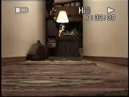 corgi puppy stampede gif.  Corgi IN Puppy Pembroke Welsh Corgi Stampede Dogs Puppies Corgi Stampede GIF Throughout Corgi Puppy Stampede Gif E