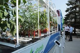 mobile greenhouse showcases ontario s indoor crops