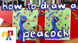 Art For Kids How To Draw A Peacock Realistic Youtube