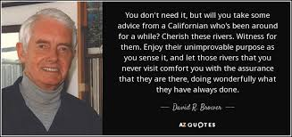 Comfort Quotes Cool David R Brower Quote You Don't Need It But Will You Take Some