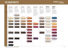 Joico Vero K Pak Hair Color Chart Joico Hair Dye Color Chart Lajoshrich Com
