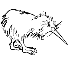 Small Picture Kiwi coloring page Animals Town animals color sheet Kiwi