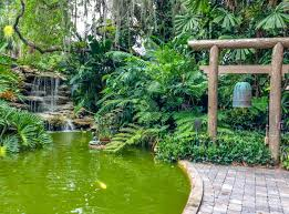 epic travel north america the south florida tampa bay area marie selby botanical gardens