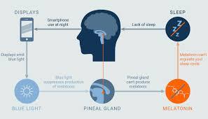 Blue Light Effect On Brain Screen Light App