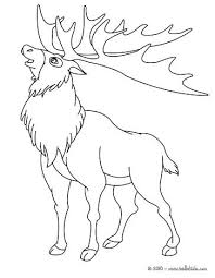 Wild Animal Coloring Pages Wild Animals Coloring Pages Printable