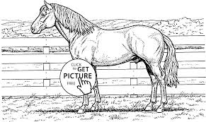 Small Picture Horse Coloring Pages For Coloring Pages