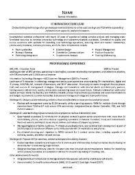 Sample Resume For Team Lead Position Sample Resume For Team Lead Position Leader Colbro Co Ksdharshan Co