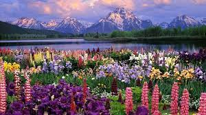 Spring PC Wallpapers - Top Free Spring ...