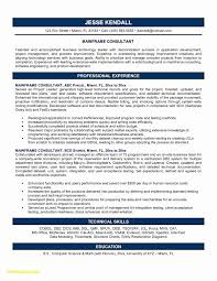 Sample Security Consultant Resume Download New Infosys Letterhead Sample Lettersample