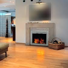 pleasant hearth fireplace door pleasant hearth glass firescreen sunlight nickel group inc pleasant hearth fireplace doors