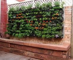 Small Picture Modern Makeover and Decorations Ideas Gardening Ideas For Small