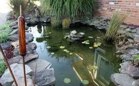 Koi Pond Water Garden Design Home Design Examples Delectable Pond Garden Design