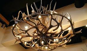 chandeliers deer horn chandelier lamp stunning deer antler chandelier lamps home furniture stag horn design