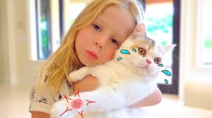 Stacy and the best cat stories for kids - YouTube