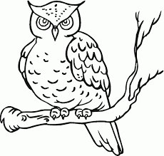 Small Picture Free easy to make coloring pages draw a owl owl coloring pages