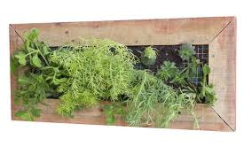 planter box wooden wall mounted
