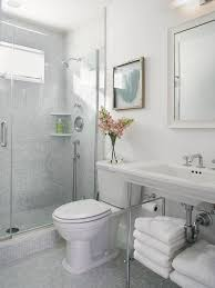 Small beach style white tile and mosaic tile mosaic tile floor alcove  shower idea in Newark