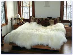 sheep rug costco sheepskin rug sheepskin rug rugs home decorating ideas sheepskin rug large sheepskin rug