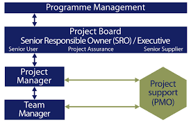 Role Of The Programme And Project Management Offices | Department Of ...