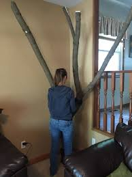 the imgur user who designed this diy project found a branch when she was out for a walk with her cat she decided that it was something she could take home