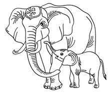 Small Picture Elephant Coloring pages Drawing for Kids Reading Learning