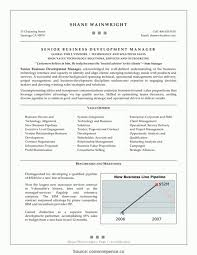 Business Development Manager Cv Template Uke Summary India Resume