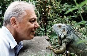 David Attenborough Funny Quotes