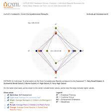 Catil 360 Feedback Talent Management Solutionstalent