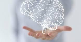 Resultado de imagem para neurologia